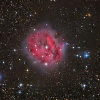 IC 5146 (2014)