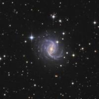 NGC 5921