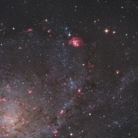 M 33 (with NGC 604)