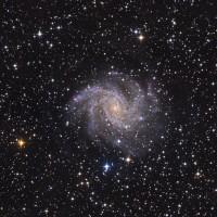 NGC 6946 (2013)