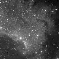 NGC 7000 (2007)