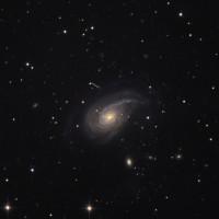 NGC 772 (2005)